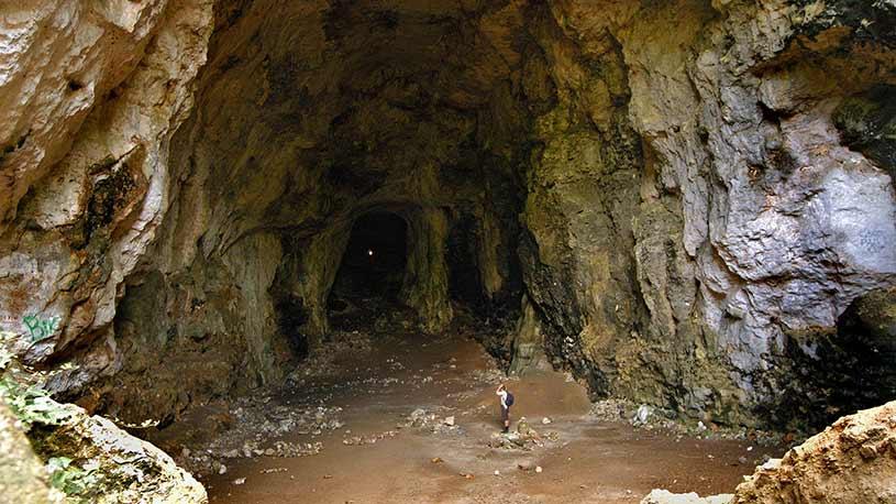 Cova des Coloms