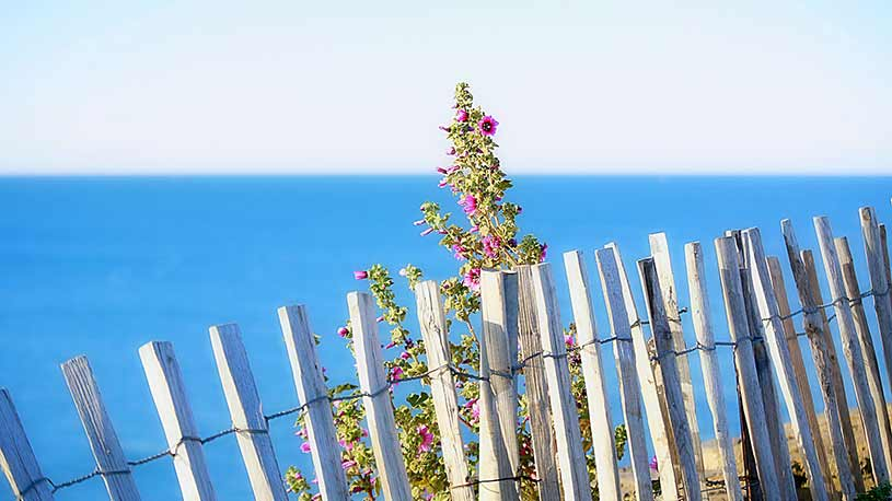 Detalle barrera y mar azul Formentera